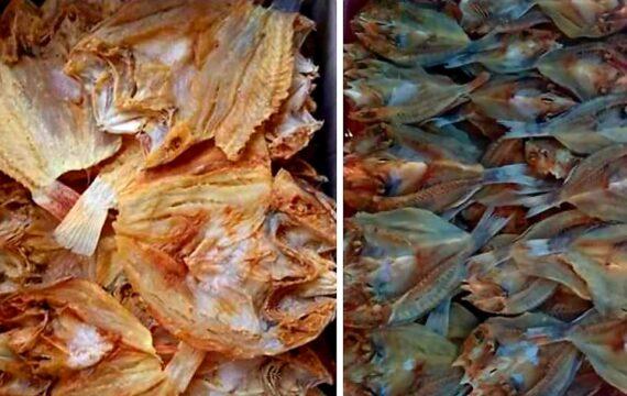 Juku' Pila': Ikan Kering Asin Khas Selayar
