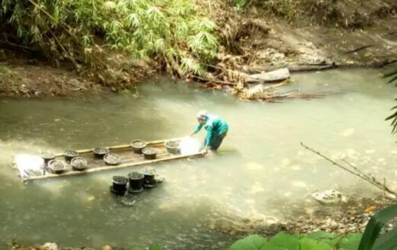 Puana Balang: Sepenggal Cerita dari Sungai Lebo' Selayar